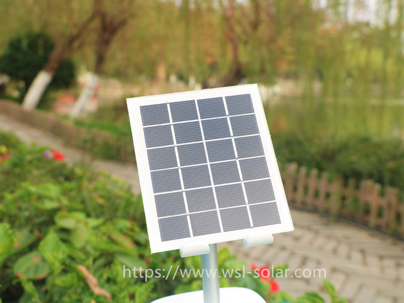 Not Afraid to be Listed as PHEIC, Longji and Dongfang Risheng Are Full of Confidence in Photovoltaic Exports